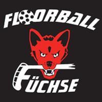 TSG Füchse II